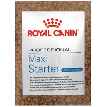 Royal Canin Maxi Starter сухой корм для собак в период беременности и лактации, и для щенков до 2-х месяцев, фасованный, 500гр (16755-)