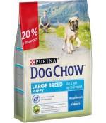 Dog Chow Large Breed Puppy сухой полнорационный корм для щенков крупной породы, с индейкой, до 2-х лет, 2,5кг (94389)