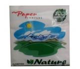 Paper Company Nature кухонные салфетки 100шт (40021)